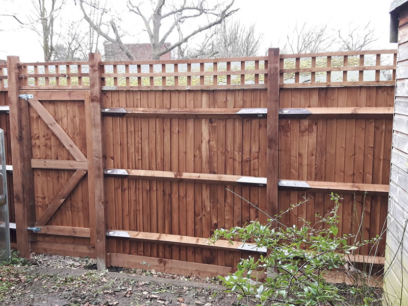 Featheredge & trellis(back)