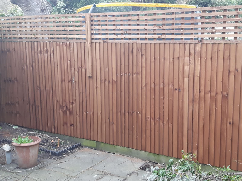 Featheredge & slat trellis